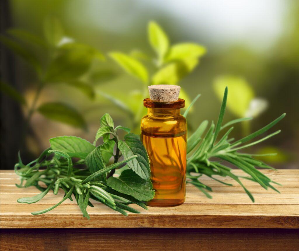 Эфирные масла для лица от морщин: как выбрать лучшее